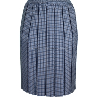 Blue Check Box Pleated Elasticated Skirt