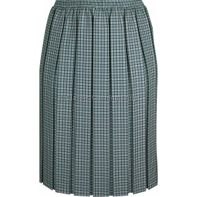 Lime Check Box Pleated Elasticated Skirt
