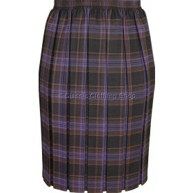 Brown Fully Elasticated Box Pleated Skirt